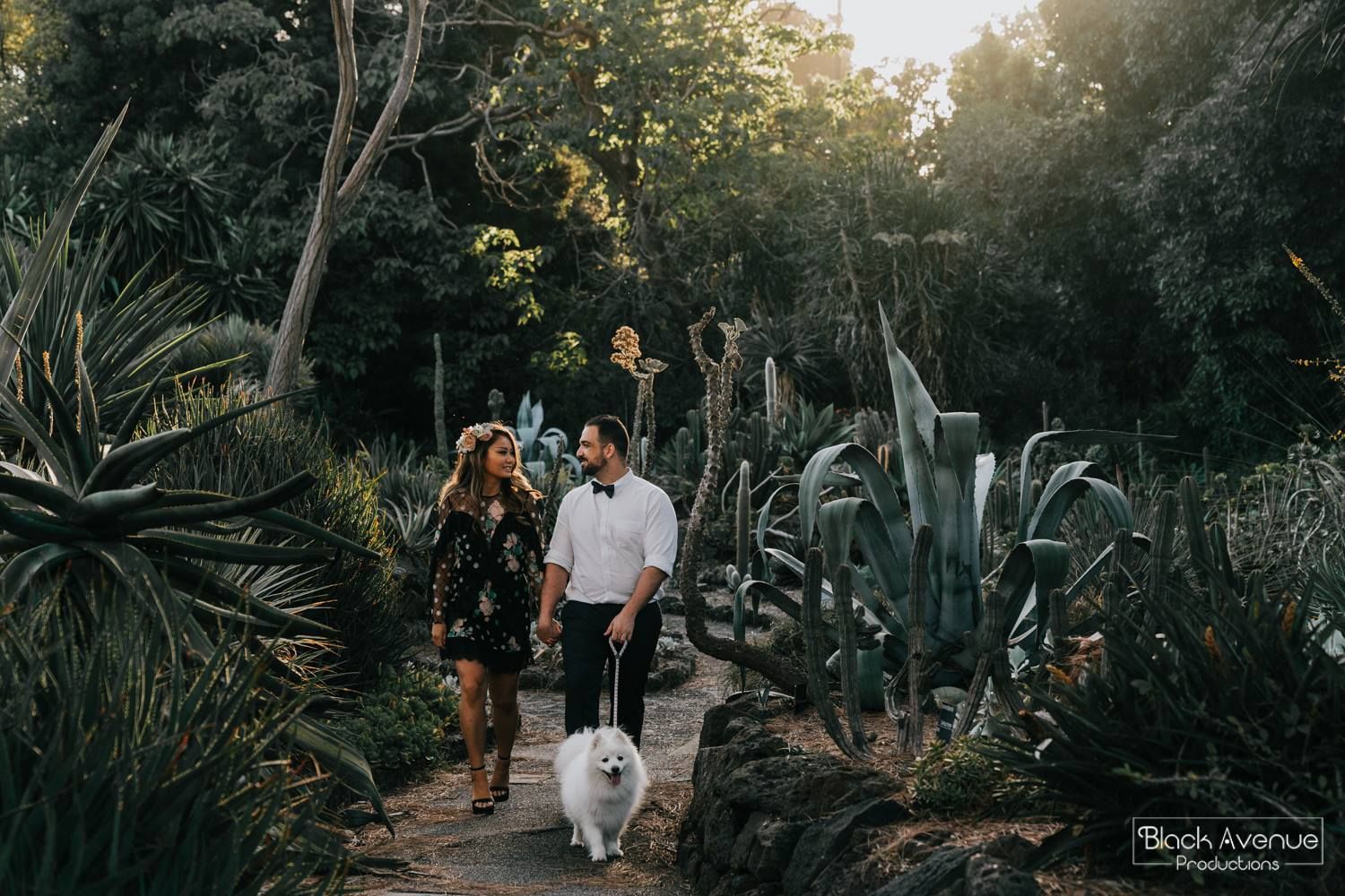 newly engaged lovers walking their dog in cactus garden in Melbourne captured by Black Avenue Productions